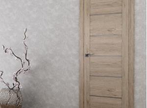 дверь профиль дорс 99xn салинас темный в интерьере